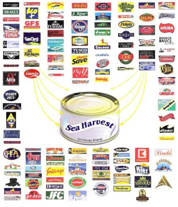 Alliance Tuna's products